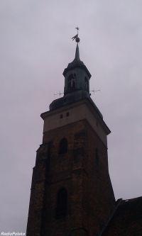 Zdjecie: Wołów *Kościół Św. Wawrzyńca*